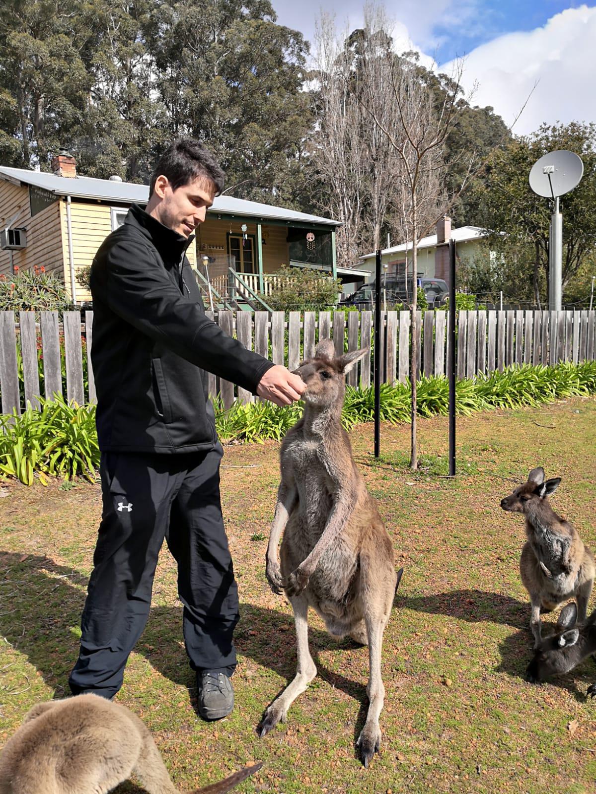 לטייל באוסטרליה