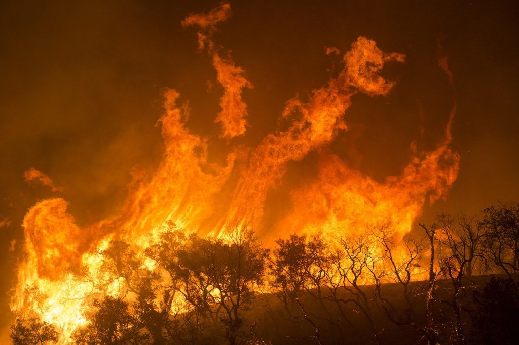 שריפות באוסטרליה