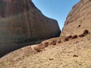 Walpa Gorge