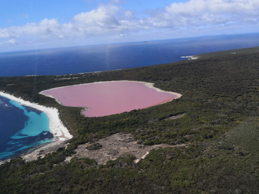 האגם הורוד